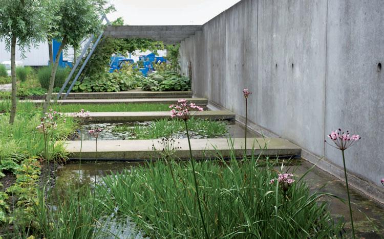 Fragiele evenwichten in de tuinen van Luc Engelhard (in Dutch)